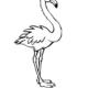 qq画图红包火烈鸟怎么画?QQ画图红包火烈鸟画法分享