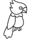qq画图红包鹦鹉怎么画?QQ画图红包鹦鹉画法分享