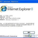 ie8浏览器中文版官方下载 xp